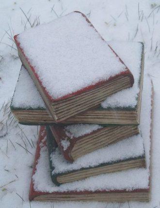 Новинки, книги, Лавка Бабуин