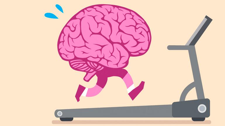 Статья, Как чтение улучшает работу мозга, Около книг