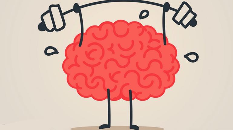 Статья. Чтение улучшает нейропластичность мозга и удлиняет жизнь, Вокруг книг