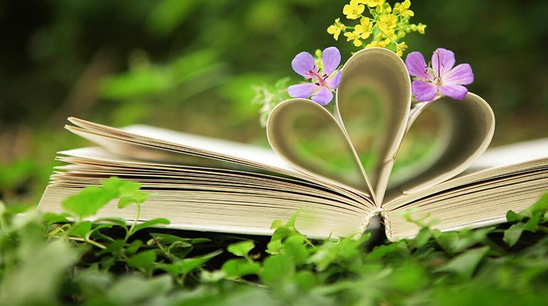 Статья, Подборка книг про экологию, Обзоры