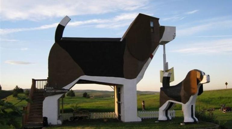 Дом-собака, Вокруг книг