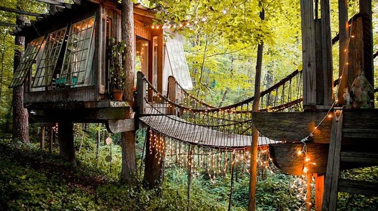 Домик на дереве в Атланте, Вокруг книг