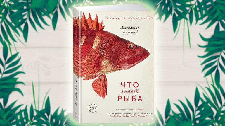 Книга,Что знает рыба, Джонатан Белкомб, 978-5-389-14366-1