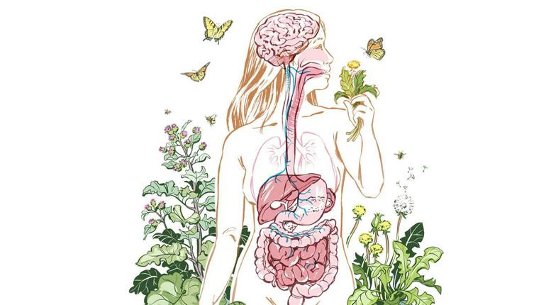 Статья, Знакомьтесь, ваш организм: 7 книг, которые расскажут вам все о вашем теле, Обзоры