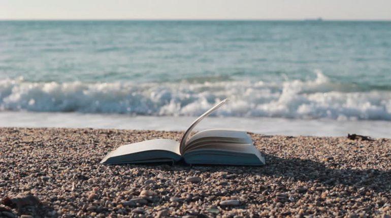 Стаття, Книги-кондиціонери: освіжаюча прохолода неймовірних пригод, Обзор