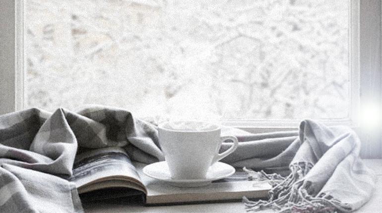 Стаття, Зимова казка: 6 книг, присвячених снігу, Обзор